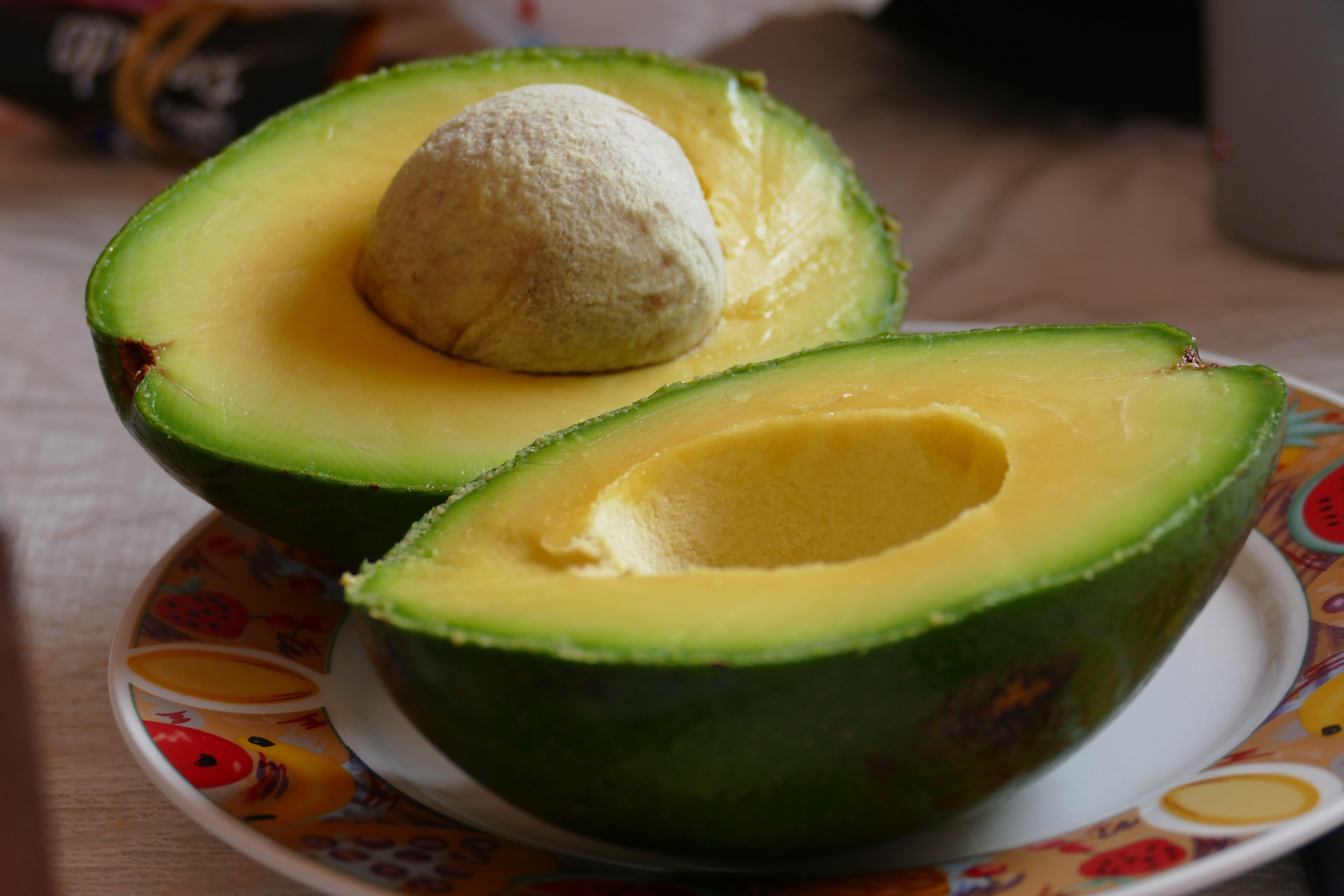 avocado-878958